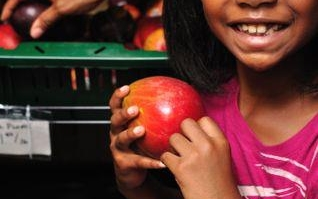 Fresh, Healthy Food Access Grant Opportunity for Greater Englewood - Apply Today!