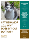 Cat Behavior 101 with PAWS Chicago