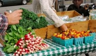 Wednesdays at Wood Street Organic Farm Stand Season Begins with Free Produce !