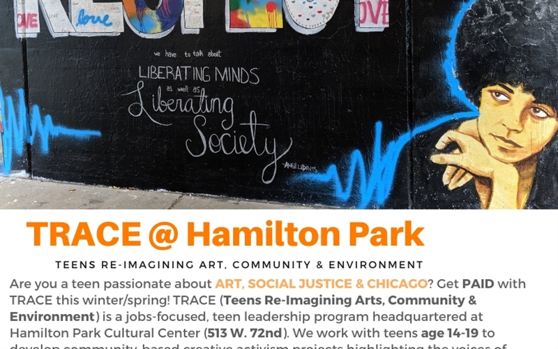 PAID teen internship in arts & civic leadership @ Hamilton Park
